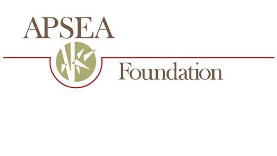 Asian pacific islander scholarship foundation